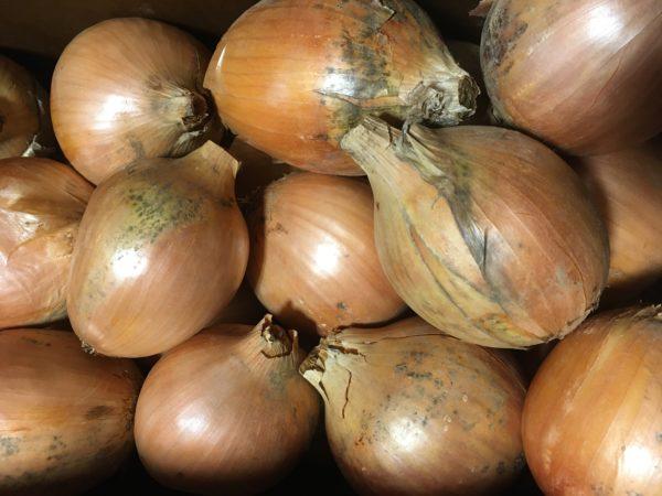 Onion, Yellow 25lbs
